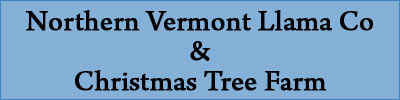 Northern Vermont Llama Co and Christmas Tree Farm | Waterville, VT